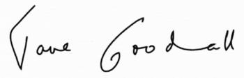 El análisis grafológico de Jane Morris Goodall es inquieta.